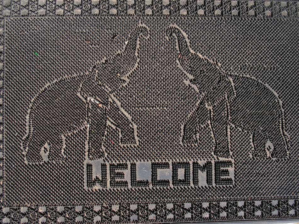 elephant welcome