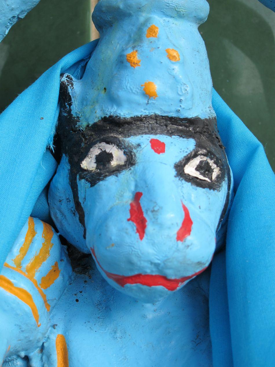 Hanuman bleu