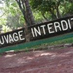 Sauvage interdit