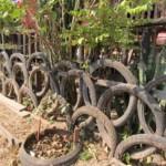 barrière en pneu